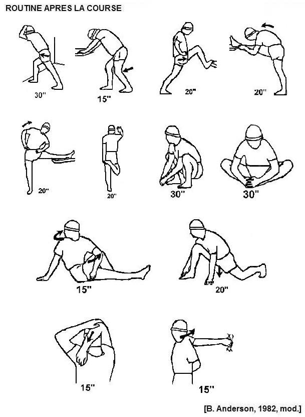 Maifa Bras Biceps et Triceps Planche dentra/înement Fitness Halt/érophilie Curl Isolateur avec coussinets en mousse haute densit/é pour entra/înement s/ûr